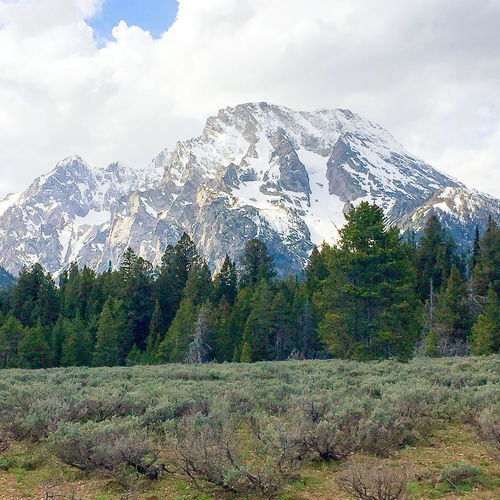 Grand Tetons National Park Mount Moran Wyoming Beauty In Nature Day Forest Landscape Mountain Mountain Range Nature No People Outdoors Scenics Sky Snow Tranquil Scene Tranquility Tree
