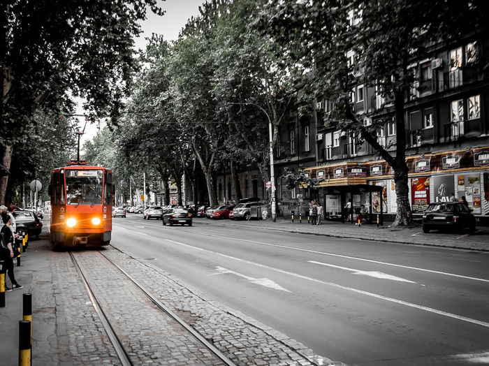 Tram on Belgrade's oldest part - Dorcol Belgrade Serbia Tram Architecture Beorag City Day Dorcol Europe Land Vehicle Mode Of Transport People Public Transportation Sky Srbija Street Streetphotography Streetscene Transportation Tree Urban Mobility In Mega Cities Adventures In The City The Street Photographer - 2018 EyeEm Awards