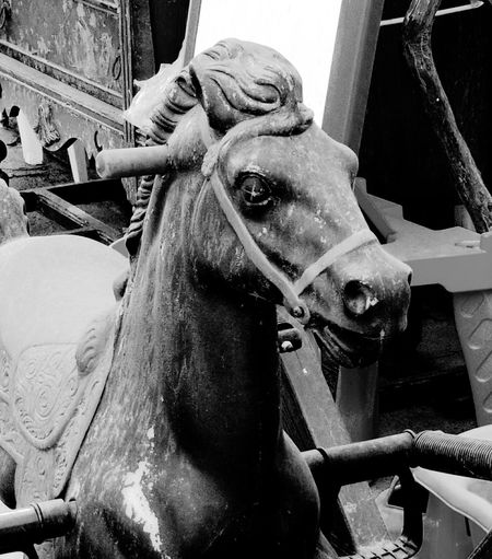 No more horses. Black And White Noir Horse Toy Urban Decay Animal Themes Day Close-up Abandoned