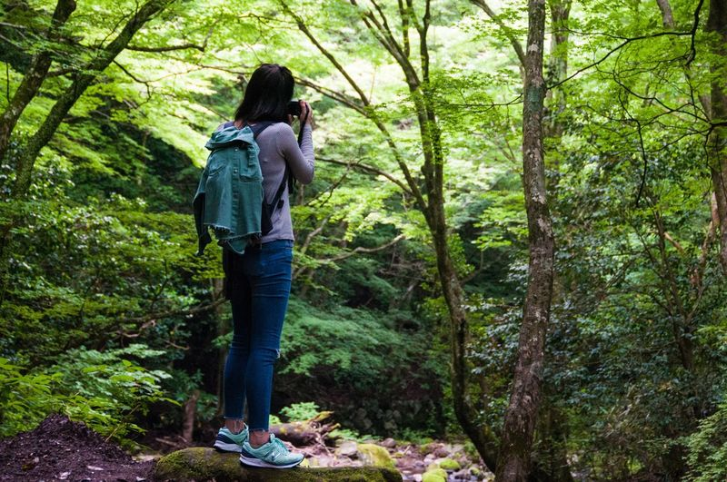 Feel The Journey Forest Girl Adventure Wild Nature Unknown Camera Ultimate Japan