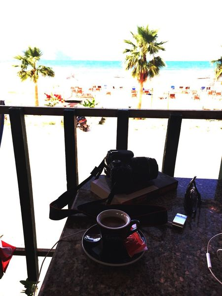 Table Drink No People Palm Tree Food And Drink Day Tree Beach Sea Close-up Indoors  Clear Sky Sky Freshness