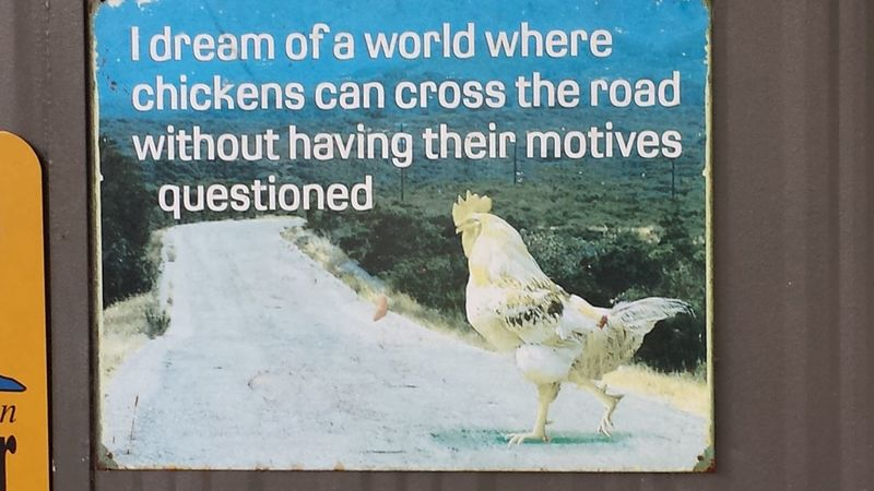 I dream of a world where chickens can cross the road without having their motives questioned Australia Chicken Cross The Road Close-up Day Humour Metal Sign No People Placard Wall Plaque