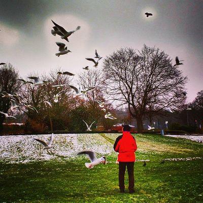 Bye bye winter Berlin Birds Deutschland Germany Igs_world Igs_berlin Igs_europe Ig_germany Insta_germany Insta_europe Ig_europe