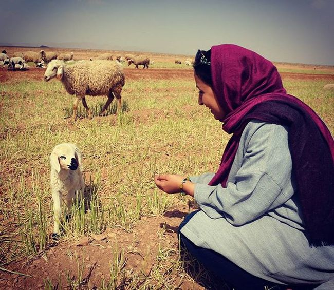 Maryam and the baby sheep,3 days old. @mymyousefi Landscape ARCHITECT Landscapelovers nature Naturelove Nature_shooters Naturelove Sheep Naturallandscape Desert Oasis