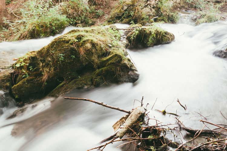 Lutterfall II. EyeEm Selects Nature The Week On EyeEm Thuringen Thuringia Beauty In Nature Day Flowing Water Forest Germany High Angle View Long Exposure Motion Nature No People Outdoors Plant River Scenics Tree Water Waterfall