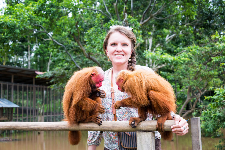 Tourist woman in the Amazon with two Bald Uakari Monkeys, near Iquitos, Peru Adult Amazon Amazonas Amazonia Animal Bald Uakari Bald Uakari Monkey Beautiful Day Iquitos  Jungle Monkey Monkeys Nature Outdoors Peru Rain Forest Rainforest South America Tree Wildlife Woman Young