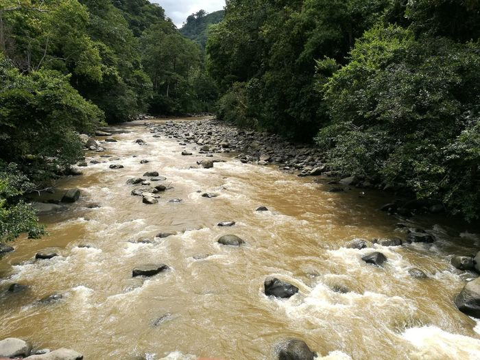 Rio Macho, Cartago - Costa Rica Nature Outdoors Beauty In Nature Costa Rica❤ Nature Water River