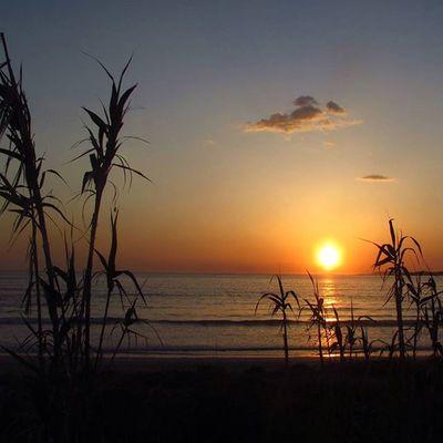 La naturaleza nos recuerda lo simple y asequible que es la vida.🌴🌅🐚 Surfplaces Lanzadabeach Sunsets Withoutfilters Galifornia Zenplaces Riasbaixas Galiciacalidade Watersports Earthplaces Skycolor Igersspain Earth Ogrove