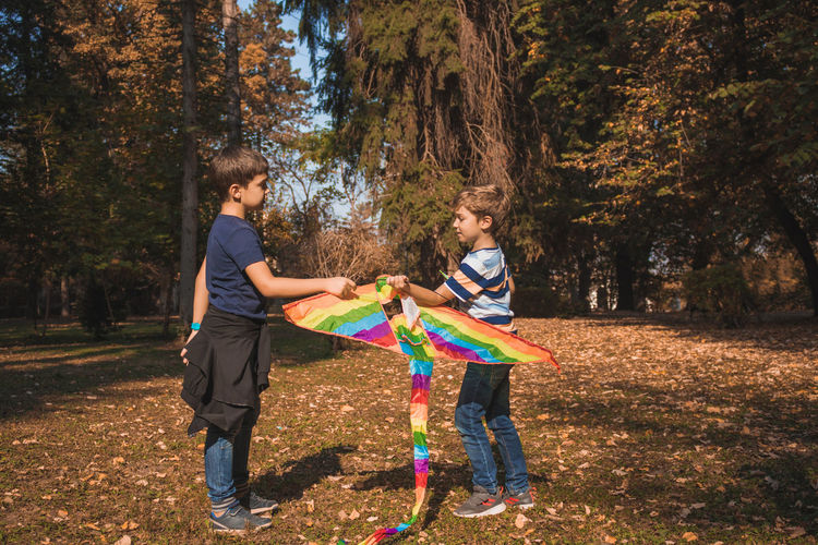 Side view of brothers holding kite while standing on land
