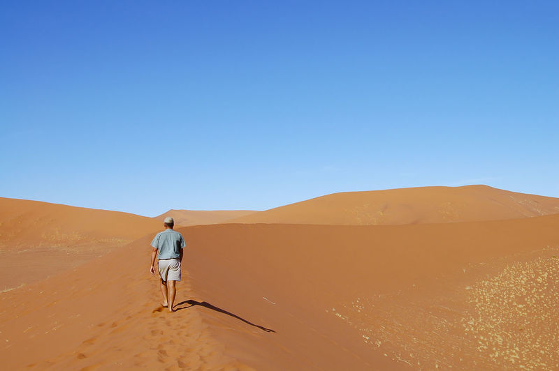 Rear view of person in desert against clear sky
