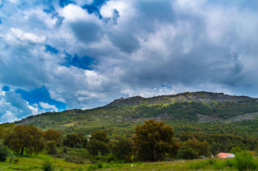 Castelo de Marvão Beauty In Nature Cloud - Sky Day Environment Grass Green Color Growth Land Landscape Mountain Nature No People Non-urban Scene Outdoors Plant Range Scenics - Nature Sky Tranquil Scene Tranquility Tree