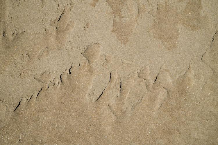 High angle view of a sand