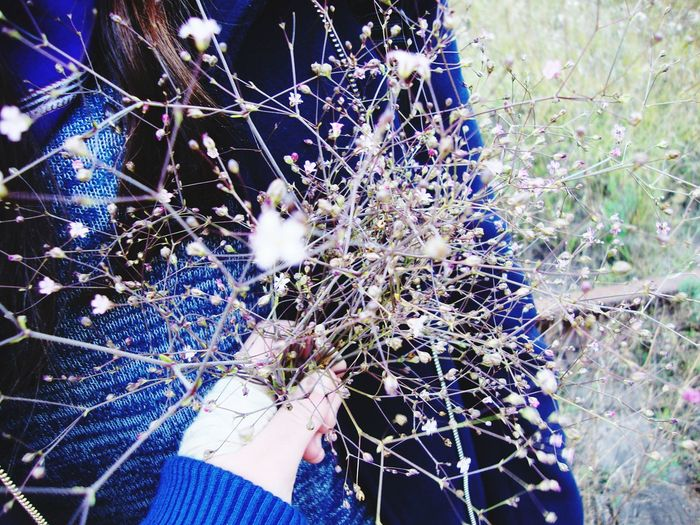 Flowers Autumn Oktober Stroll Nature Fortune 🌹🌷🌹