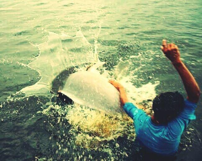 Taking Photos em Amazon - Brazil Amazonas-Brasil Rio Negro, Manaus The Boy And The Pink Dolphin Boto Fauna_collection Fauna Eyeem Fauna