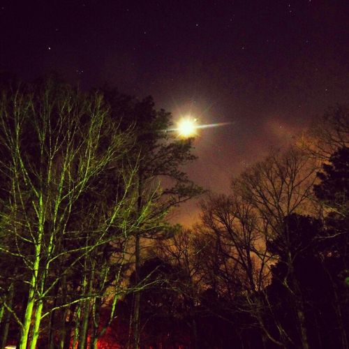 Camping under the moon. Long exposure, glow of the city behind the trees and glow of the campfire below. Nightphotography Trees Moon Camping Sky_collection Eye4enchanting