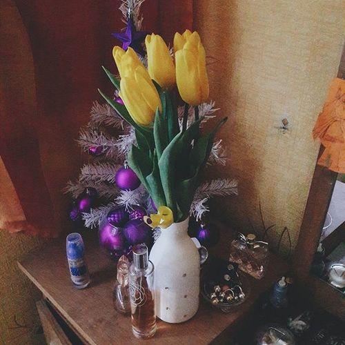 Доброе утро! ауменятюльпаны ауменяелка 😄