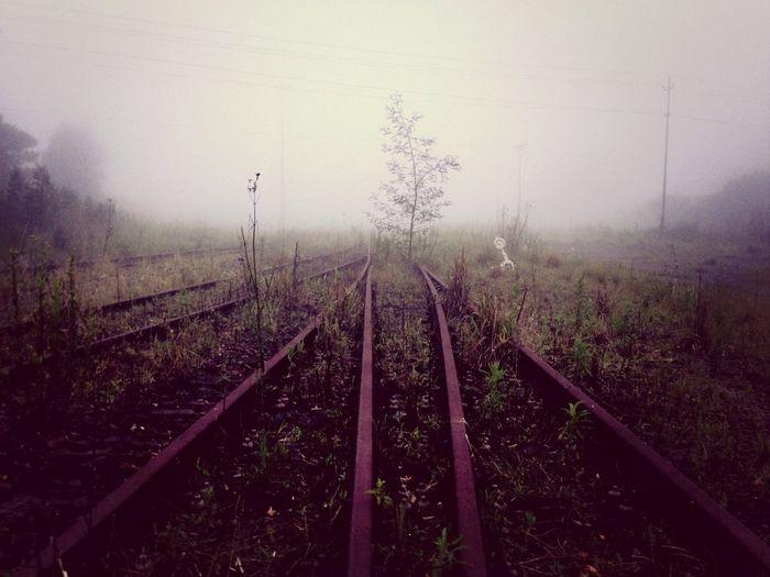 Railroad Vintage