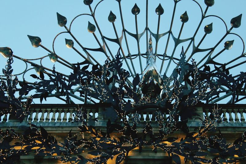 Peacock Low Angle View Built Structure No People Architecture Sculpture Statue Day Close-up