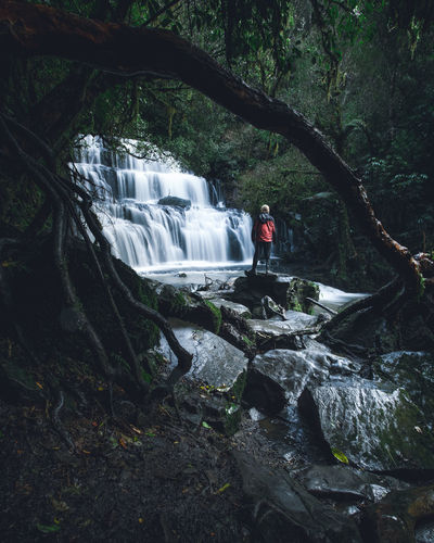 Catlins Flowing Flowing Water Forest Full Length Land Leisure Activity Lifestyles Long Exposure Motion Nature One Person Outdoors Plant Rainforest Real People Rock Rock - Object Scenics - Nature Tree Water Waterfall