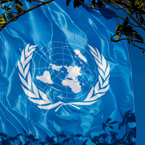 Nature Blue No People Plant Tree Plant Part Day Outdoors Close-up Transparent Pattern Pool Digital Composite United Nations Symbol International Human Rights Organisation Worldwide Flag Flag Of United Nations World
