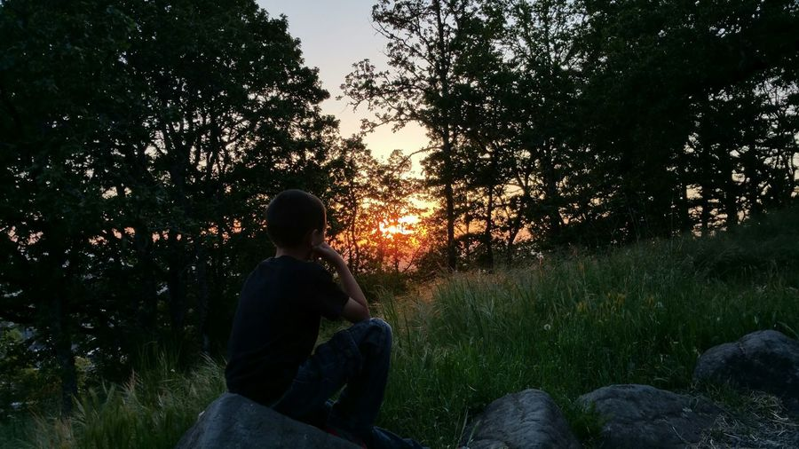 Pondering Thinking Nature God's Beauty