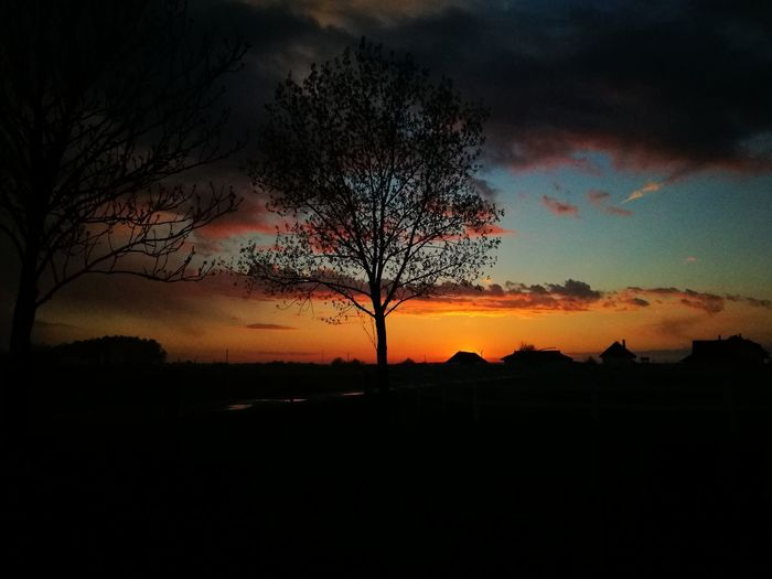 Sunset Beauty In Nature Tree Cloud - Sky Nature Sky Tree Area No People Outdoors