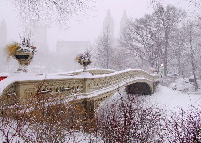 New York City Bow Bridge Central Park