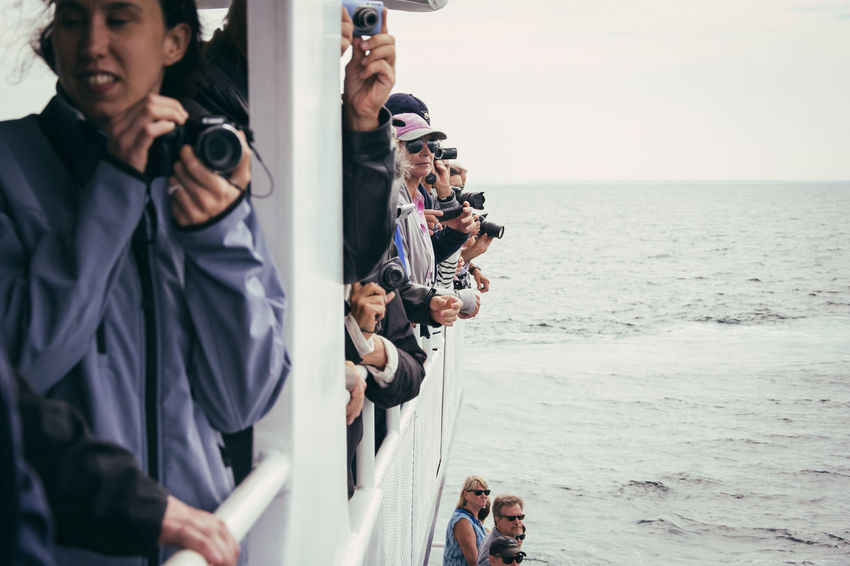 Autumn Exploring Let's Go Explore Taking Photos Taking Pictures USA Waiting Activity Boat Group Of People Last Summer Outdoor Photography Outdoors Photographing Real People Road Trip Sea Sky Usa Trip 2017 Water Whale Watching Whalewatching