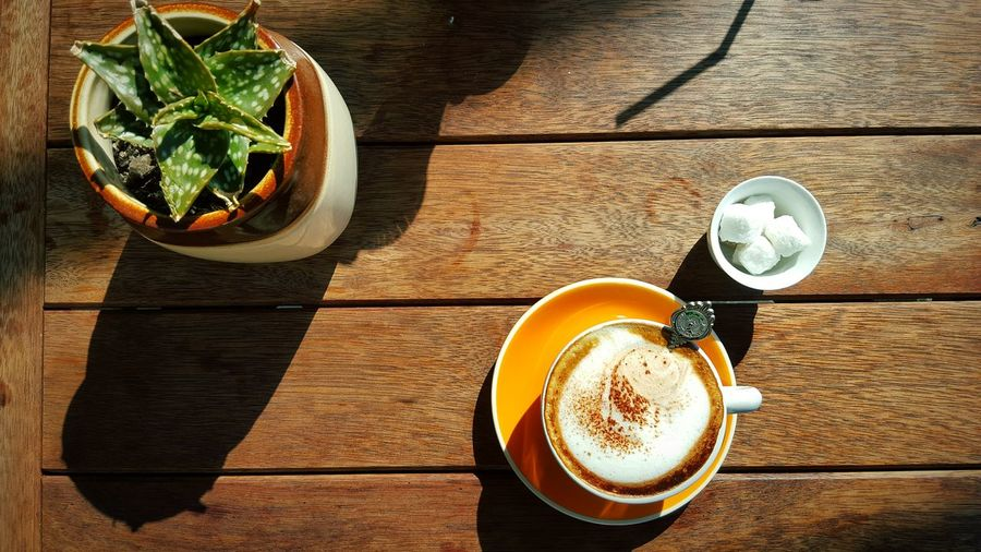 Directly Above Shot Of Coffee And Potted Plant On Wooden Table
