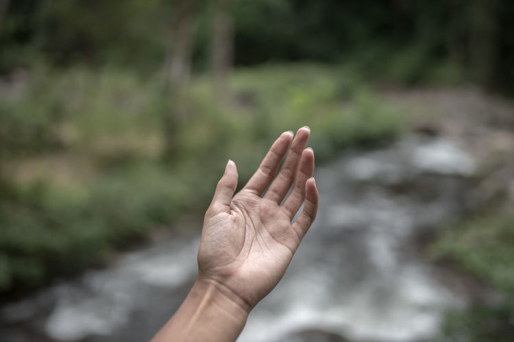 Close-up of cropped hand against stream in forest