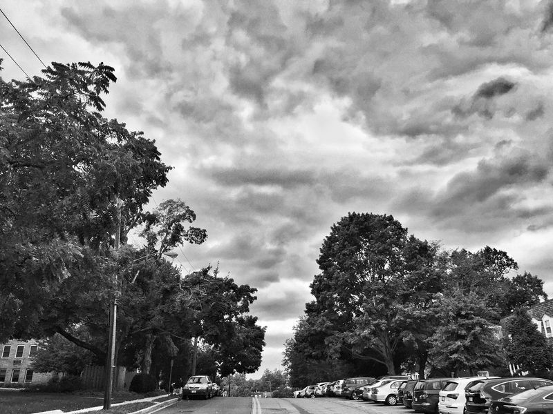 EyeEm Selects Tree Car Cloud - Sky Sky Growth Transportation Land Vehicle Day Outdoors Nature No People JoMo Photo IPhoneography Washington, D. C. Black And White Cityscape Blackandwhite Streetphotography