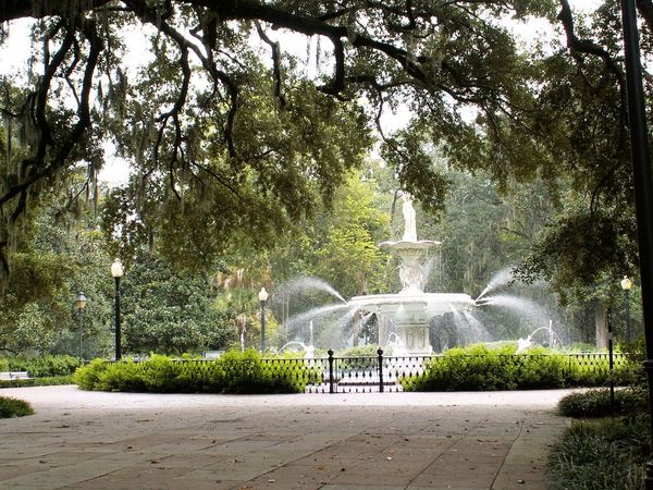 The Forsyth Park fountain. Live Oak Spanish Moss Architectural Feature Architecture Branch Day Fountain Garden Garden Photography Lush Foliage Manicured Garden Nature No People Outdoors Park Sculpture Statue Travel Travel Destinations Tree Water