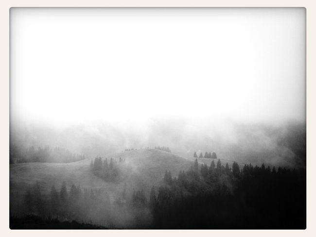 Nebel - Mobile Photography Blackandwhite Landscape Mountains