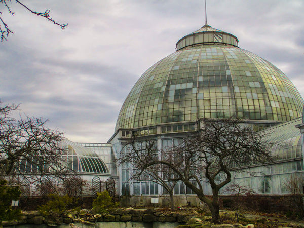 Architecture Built Structure City Cloud - Sky Day Detroit Dome Glass - Material Glass Dome No People Outdoors Sky Tree