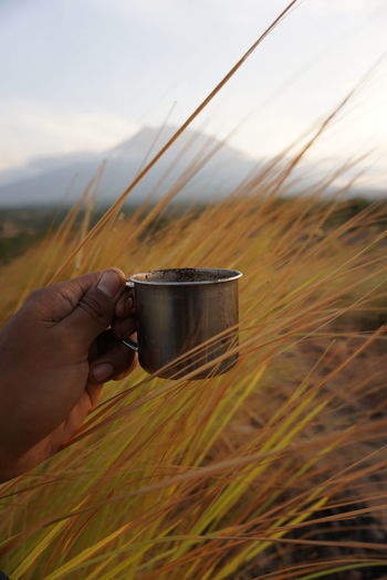 Cropped image of hand holding coffee cup against sky
