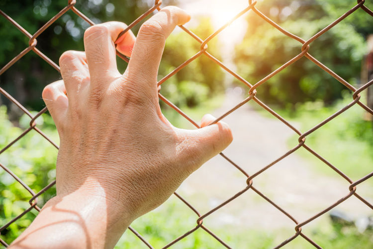 Cropped image of hand holding chainlink fence