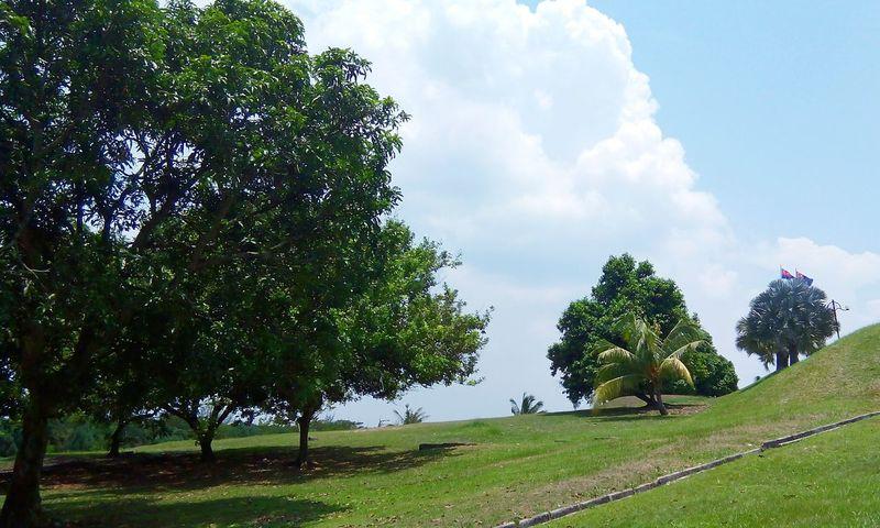 Scenery Hills Relaxing Taking Photos Enjoying Life Malaysia Plants 🌱 Landscape
