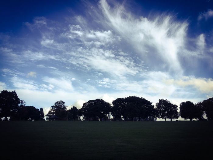 Dramatic sky Tree Sky Nature Scenics Outdoors Growth No People Silhouette Tranquility Cloud - Sky Tranquil Scene Beauty In Nature Sunbeam Grass Landscape Day Mountsfield Park London Lewisham Catford Cloudscape Dramatic Sky Trees