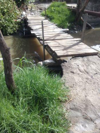 Beauty In Nature Water Bridge Wood - Material