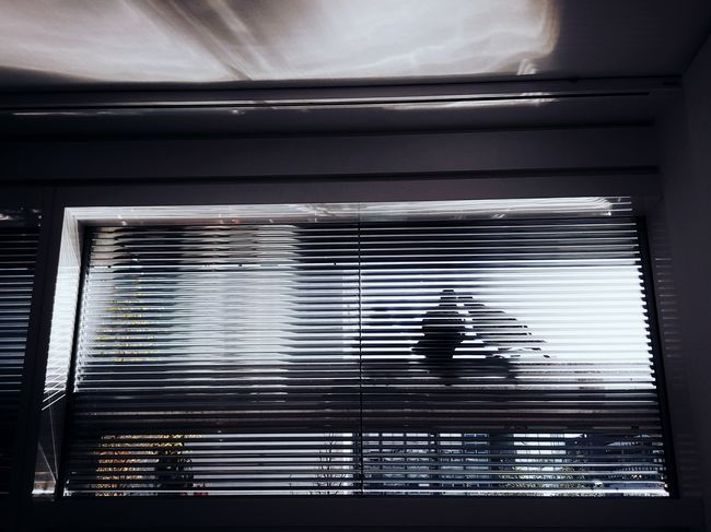 Spies at work... Indoors  No People Architecture Day Close-up Birds Pigeon Light And Shadow Shadow Shadowplay Enjoy The New Normal At My Window Office Window Simplicity Beauty In Ordinary Things Adapted To The City Art Is Everywhere