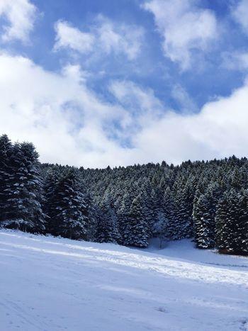 Snow Winter Sky Cloud - Sky Cold Temperature Nature No People