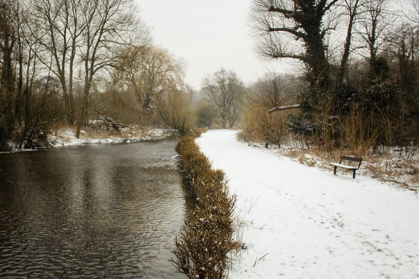 Snowy path No People Stream River Snowy Path Bare Tree Winter Cold Temperature Snow Nature Outdoors