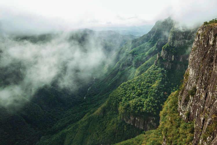 Fortaleza canyon with steep rocky cliffs covered by forest and fog, near cambará do sul, brazil.