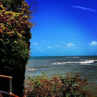 Mdclicks Sea Nexus5 Landscape
