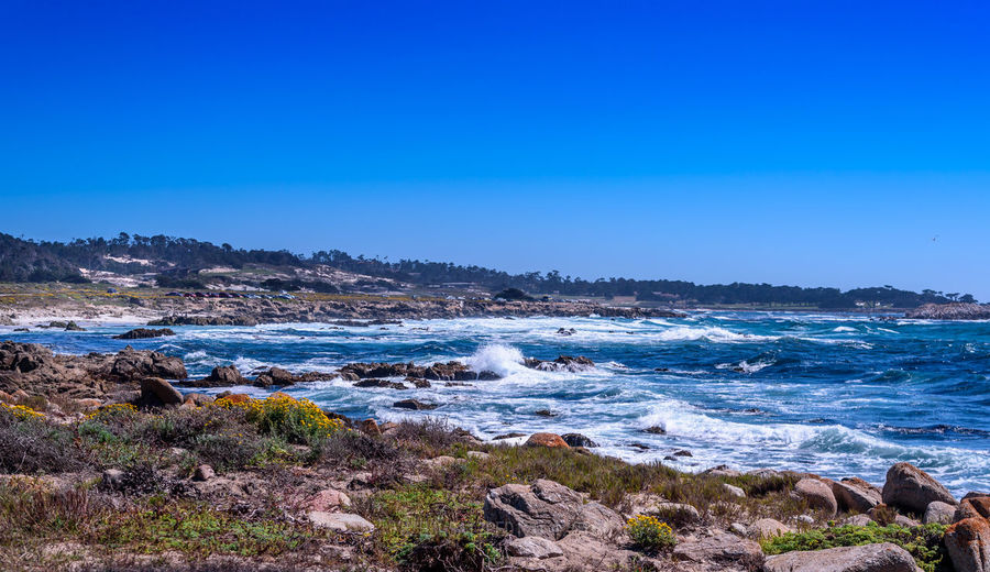 Coast by 17 mile drive (Carmel by the Sea) 17 Mile Drive Coastline Landscape Photography Nikon D750 Nikon Photography Beach Beautiful Destinations Beauty In Nature Blue Californina Captures Carmel By The Sea Day Horizon Over Water Landscape Nature Ocean Outdoors Scenics Sea Sky Travel Destinations Water Wave An Eye For Travel