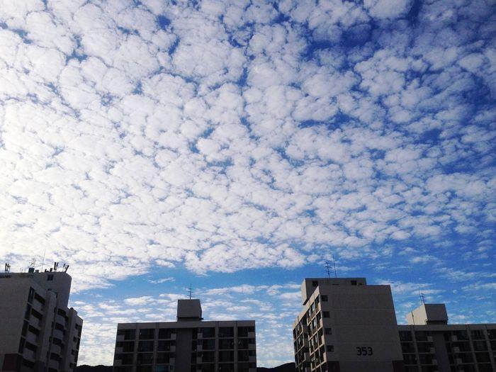 Sky Blue Sky