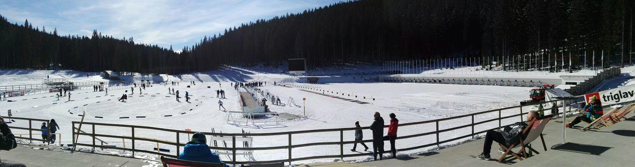 Beautifoul Pokljuka biathlon centre Nature Beauty In Nature Mountain Peak Slovenia Snow Winter Pokljuka Pokljukavital Biathlon EyeEm Selects