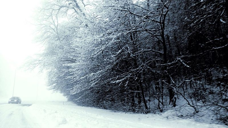 Winter Snow Snow ❄ Winter Wonderland Winter Wonderland ❄ Lamppost Car Lonely Europe Cold Cold Days Cold Days Warm Hearts Cold Winter ❄⛄