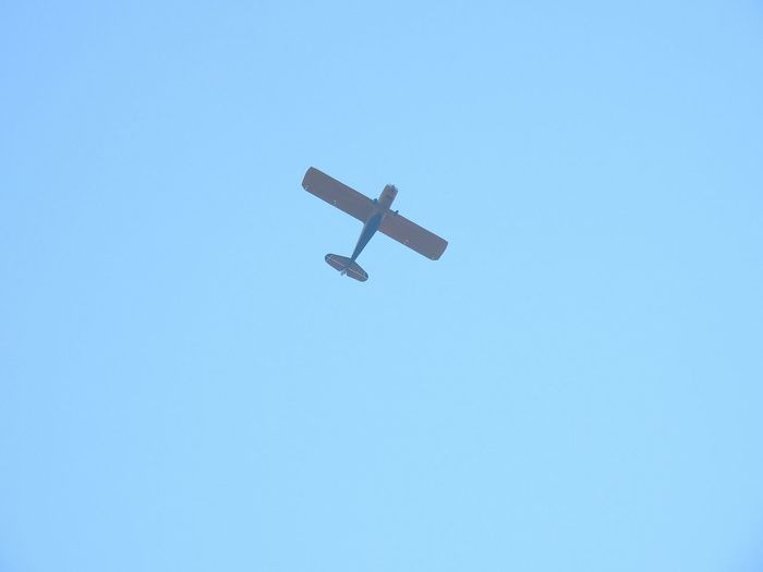 Small plane overhead Small Plane Plane Airplane Up Above View From Below Flying Flying High Blue Sky Copy Space Skies Sky Blue Pilot Airplane Flying Clear Sky Air Vehicle Plane Sky Aeroplane Aerospace Industry Aircraft Aircraft Wing Flight Winged