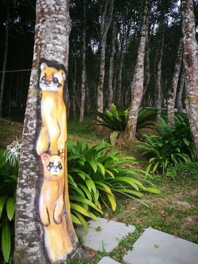 Tree painting EyeEm Selects Treepainting Tree Agarwood Sandalwood Painting Forest Forest Photography